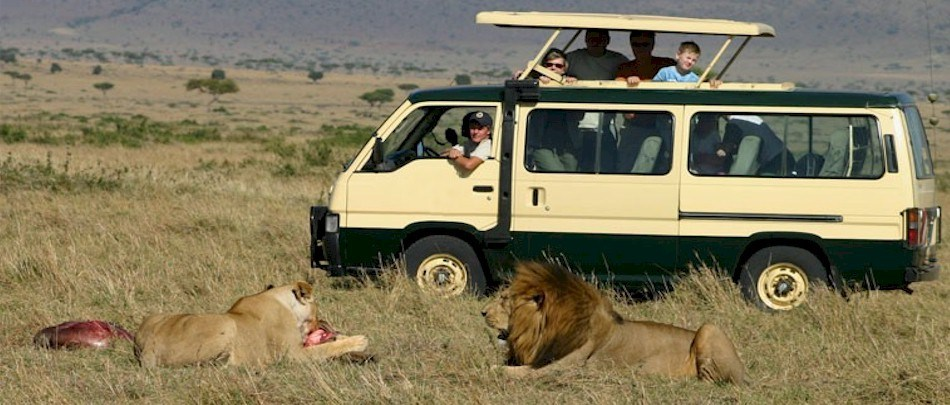 Do This If You Would Like To Enjoy African Safari Tours |